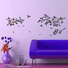 Bird Tree Branches wall stickers Decal Removable Art Vinyl Decor Home Xlarge