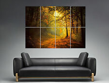 Automne Nature Chemin Forêt Couché soleil Forest Wall Art Poster A0 Large print