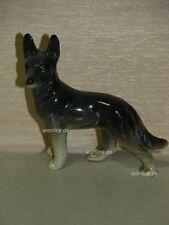 +# A001983_05 Goebel Archiv Muster Cortendorf Schäferhund Sheepdog Welpe Junges