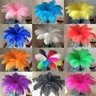 Wholesale 10/20/50/100/200pcs Quality Natural OSTRICH FEATHERS 10-12inch/25-30cm