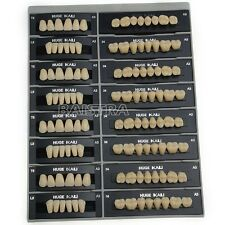 GER Site 4 sets Dental Lab Use Synthetic Resin False/Fake Teeth T8-A3 Color