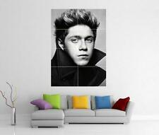 Niall HORAN ONE DIRECTION 1D Take Me Home c'est géant américain Art Poster J246
