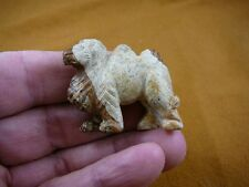 (Y-CAM-567) CAMEL camels TAN BROWN stone gemstone carving DESERT DROMEDARY HUMP