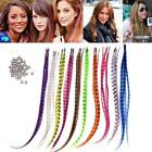 "New 50pcs Grizzly synthetic Feather hair Extensions 16"" with 50 beads TSR"
