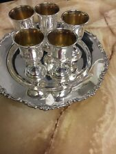 Sterling Silver Liquor Cup Set And Tray