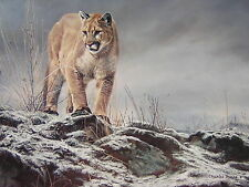 Charles Frace Cougar Royal Ontario Musuem Exhibition Art Poster