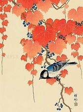 JAPAN NATURE BIRD IVY BERRY SHOSON OHARA POSTER ART PRINT PICTURE BB47A