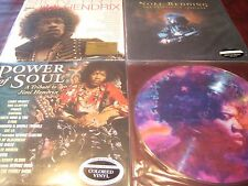 JIMI HENDRIX TRIBUTE PICTURE DISC IN FROM STORM STONE FREE POWER OF SOUL REDDING