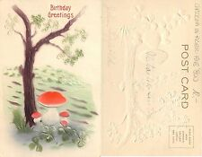"""USA - EMBOSSED POSTCARD YEAR END '800 """"Birthday Greetings"""" (S-L XX230)"""