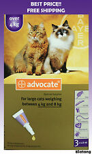 Advocate For Cats 4-8kg Large Cats 3 Pack Flea and Lice Treatment