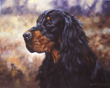 GORDON SETTER DOG FINE ART LIMITED EDITION PRINT - Head Study by John Trickett