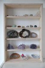 023 Sammler Vitrine  Mineralien & Fossilien etc.