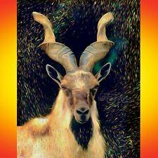 NIK TOD ORIGINAL PAINTING LARGE SIGNED ART MARKHOR WILD GOAT IBEX RARE ANIMAL UK