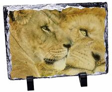 Lions in Love Photo Slate Christmas Gift Ornament, AT-7SL