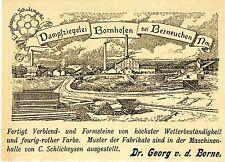 Dr.Georg v.d.Borne Bornhofen  Berneuchen DAMPFZIEGELEI Historische Reklame 1896