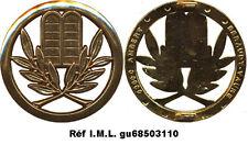 Insigne de béret, AUMONIER ISRAELITE, dos lisse plat, Béraudy Vaure (1437)