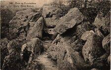 CPA  Forét de Fontainebleau - Grotte Maria Brunetti    (249035)
