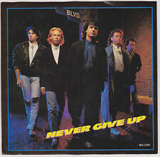 BLVD - NEVER GIVE UP - RARE DJ DEMO COPY - 45 RPM VINYL - 1988