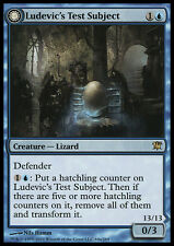 MTG LUDEVIC's TEST SUBJECT - CAVIA DI LUDEVIC - ISD - MAGIC