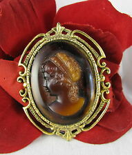 Vintage Ornate Faux Cameo Gold tone Framed  Pin Brooch  CAT RESCUE