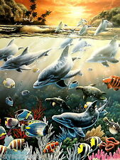 DOLPHIN FISH  PICTURE TROPICAL FISH AQUATIC SEA LIFE   PRINT ONLY 16X20