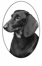 """4""""X6 DACHSHUND static cling etched glass window decal"""