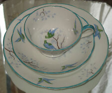 Antique : china trio Cup / Saucer / Plate - decorated birds - possibly pidgeons