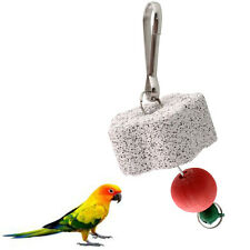 Parrot Bird Cage Chew Bite Scratcher Bell Toy Teeth Grinding Parakeet