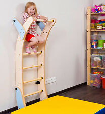 Kids Playground Ladder Set, Indoor Climbing Sport Wall Gym, Eco Frindly Playset