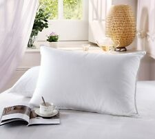 King 500 Thread Count Goose Down Firm filled Pillow (each) 100% Cotton