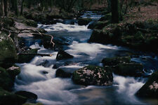 656020 Golitha Falls Mentioned In The Domesday Book A4 Photo Print