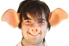 WORLD BOOK DAY-ON THE FARM-3 LITTLE PIGS-SING-Pig Ears & Snout Animal set