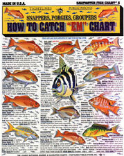 "SALTWATER FISH How to Catch ""EM"" Chart - Tightline Publications #6"