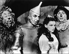 THE WIZARD OF OZ ENTIRE CAST RARE 8x10 PHOTO
