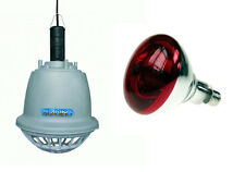 Imperdibile riflettore riscaldante lampada infrarossi per maiali pulcini dog new