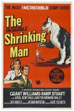 THE INCREDIBLE SHRINKING MAN SCI-FI MOVIE POSTER 12X18