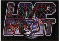 LIMP BIZKIT logo man TEXTILE POSTER FLAG - 110 x 75 cms RARE - no longer made
