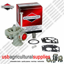 Briggs & Stratton Carb Carburateur 795477 bs795477 lendemain 794161