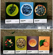 LOT 30PCS Postcard Fruits and Vegetables Color Swatch Bulk Set #68