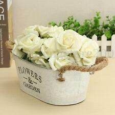 Metal Iron Flower Pot with Rope Hanging Balcony Garden Plant Planter Home Decor