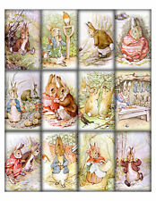 12 PETER RABBIT  - THICK 155 LB SCRAPBOOK PAPER CRAFT CARD TAGS GIFT
