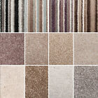Stainsafe More Noble Saxony Carpet. Quality Thick Shag Pile. Stain Resistant.