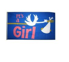 It's a Girl Stork Flag - 5 x 3 FT 100% Polyester with Eyelets New Born Pink IE