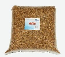 11 LBS Dried Mealworms in Bulk for Chickens Bluebirds Hedgehoges by YUMMYWORMS