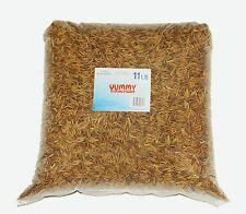 YUMMYWORMS Bulk Dried Mealworms-Treats for Chickens & Wild Birds(11 Lbs)