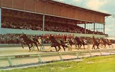 Driving for the finish at BATAVIA DOWNS, BATAVIA, NEW YORK all weather racing