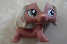 Littlest Pet Shop RARE Dachshund Dog Puppy #1631 Brown Tan Patches LPS