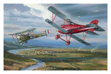 Carte Postale Albatros DIII Manfred von Richtofen