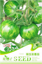 1 Pack 20 Green Stripe Tomato Seeds Tomatoes Organic C089