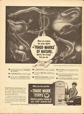 1953 vintage ad, Ethyl Gasoline, 'Trade-Marks of Nature'  -042013